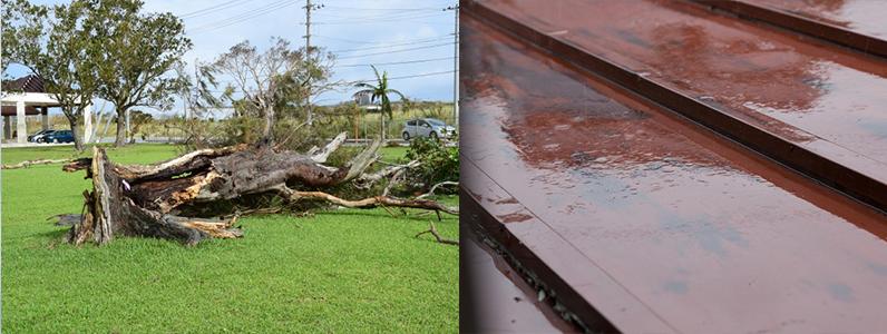 外的要因のよる屋根へのダメージ